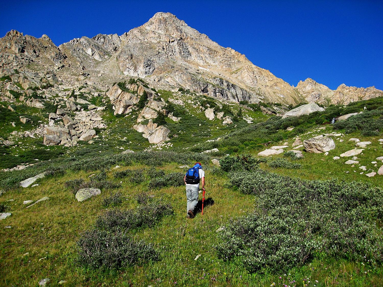 Williams Mountain - 13382